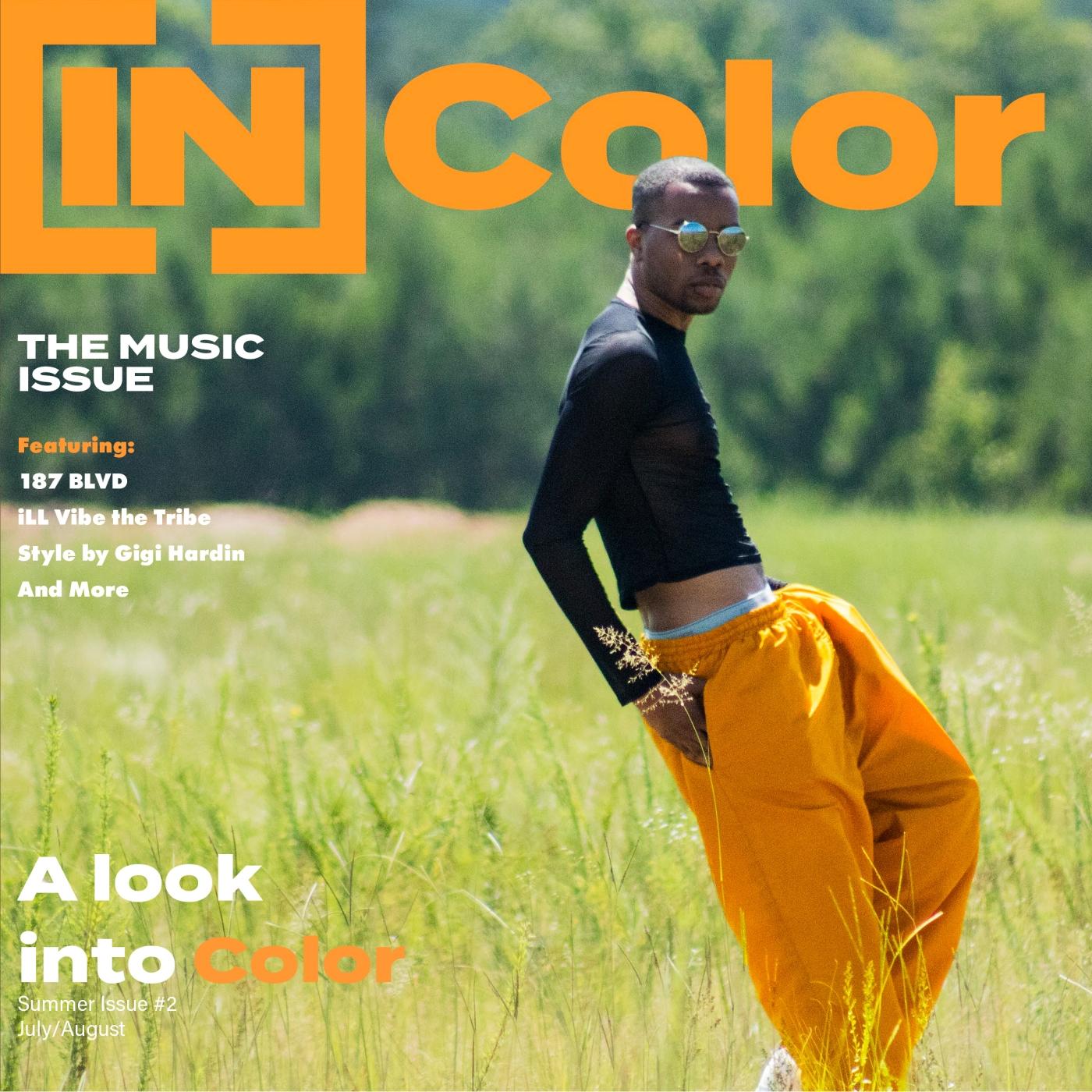 incolor promo cover 2